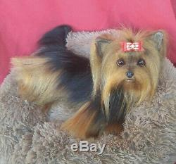 14.5 OOAK artist pose able life size Yorkie Yorkshire Terrier puppy dog