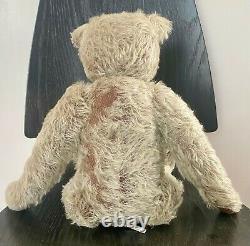 16 Stier Bear By Kathleen Wallace