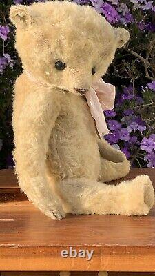 17(43cm) Mohair Artist Bear by Susanne Tauber Die aus dem Koffer-2021 Design