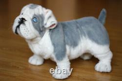 English Bulldog. Size 38cm. Realistic toy. Dog. Puppy