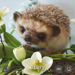 Hedgehog felted hedgehog