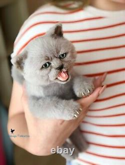 Kitten/cat 9 in(23cm) realistic toy