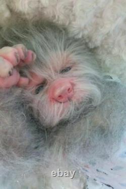 REBORN CUSTOM MADE TO ORDER LUCIEN Hybrid WERE WOLF ARTIST BABY DOLL PUP