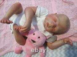 Reborn Bountiful Baby Doll Daisy 20 Baby Artist Of 6 Yrs Dan Sunbeambabies Ghsp