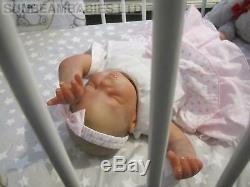 Reborn Doll Bountiful Baby Girl Rose/ Artist Dan At Sunbeambabies With Gift Bag