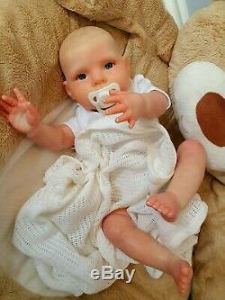 20 Doll Boy Bountiful Reborn Bébé Dylan Par Dan Artiste De Sunbeambabies