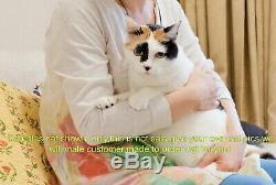 Aiguille Felted Animale Fait À Laine D'art Chat Commande Personnalisé Sculpture Ooak Cadeau X