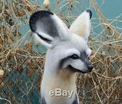 Big Eared Fox Felted, Collection Ooak Des Animaux Sauvages