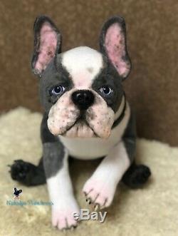 Boston Terrier Chiot / Chien Dans 18,5 (47 Cm) Jouet Réaliste