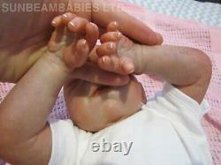 Bountiful Baby Doll Renaissent Daisy 20 Artiste Bébé De 6 Ans Dan Sunbeambabies Pvhg