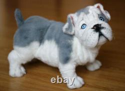 Bulldog Anglais. Taille 38cm. Jouet Réaliste. Chien. Chiot