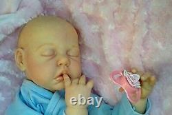 Nouvel Artiste 24 6 Mo. Chubby Baby Camille Par Ann Timmerman Renaît Par Peg Spencer