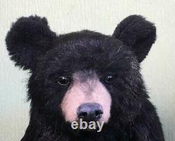 Pawtrait Bears Ooak Realistic Black Bear Par Brigitte Smith