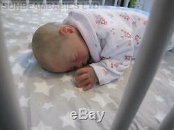 Poupée 16 Bountiful Renaissent Baby Girl Teagan Par L'artiste Dan À Sunbeambabies Pvhg