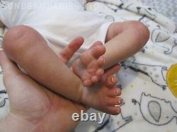 Reborn Toddler Doll 24 Bountiful Baby Boy Par Artiste Dan Sunbeambabies