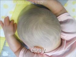 Reborn Toddler Doll 8lbs Bountiful Baby Girl Artist 7 Ans Dan Sunbeambabies Ghsp