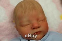 Réincarné Baby Boy Doll Prématuré Prématurée 13 Caleb Boneham Par L'artiste De 9yrs Pvhg